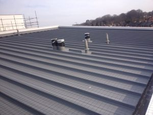 Seagull netting installed on flat roof