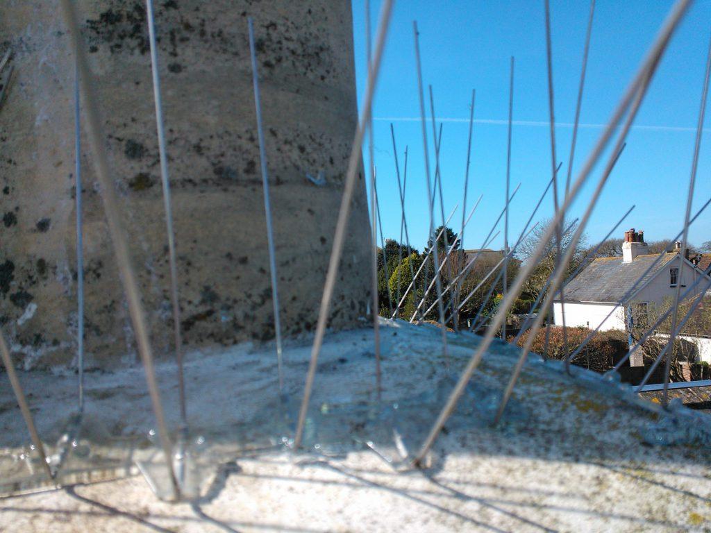 Bird deterrent spikes installed by Kent Bird Control Services