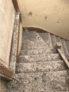 Bird poo removal on stairs Kent