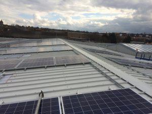 Solar panel pigeon protection Kent - pic3