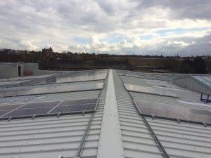 Solar panel pigeon protection Kent - pic4