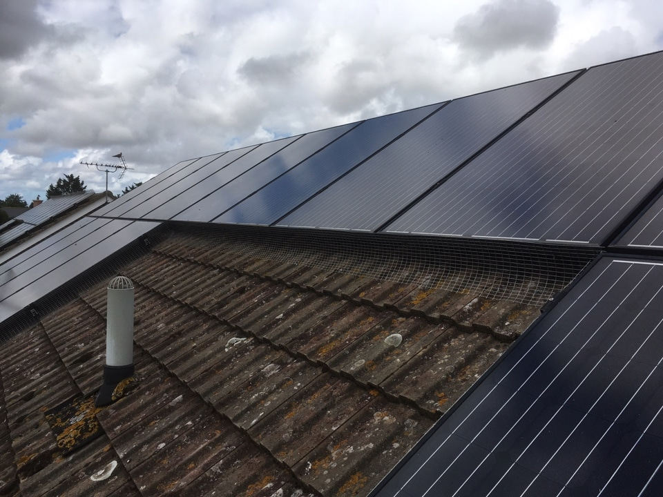 Solar panel pigeon protection for domestic properties Kent